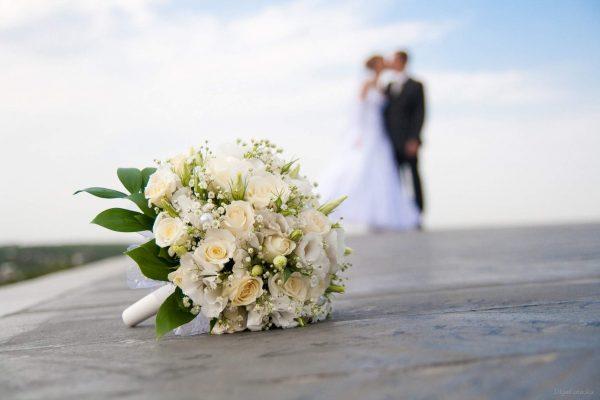1508596945_svadba