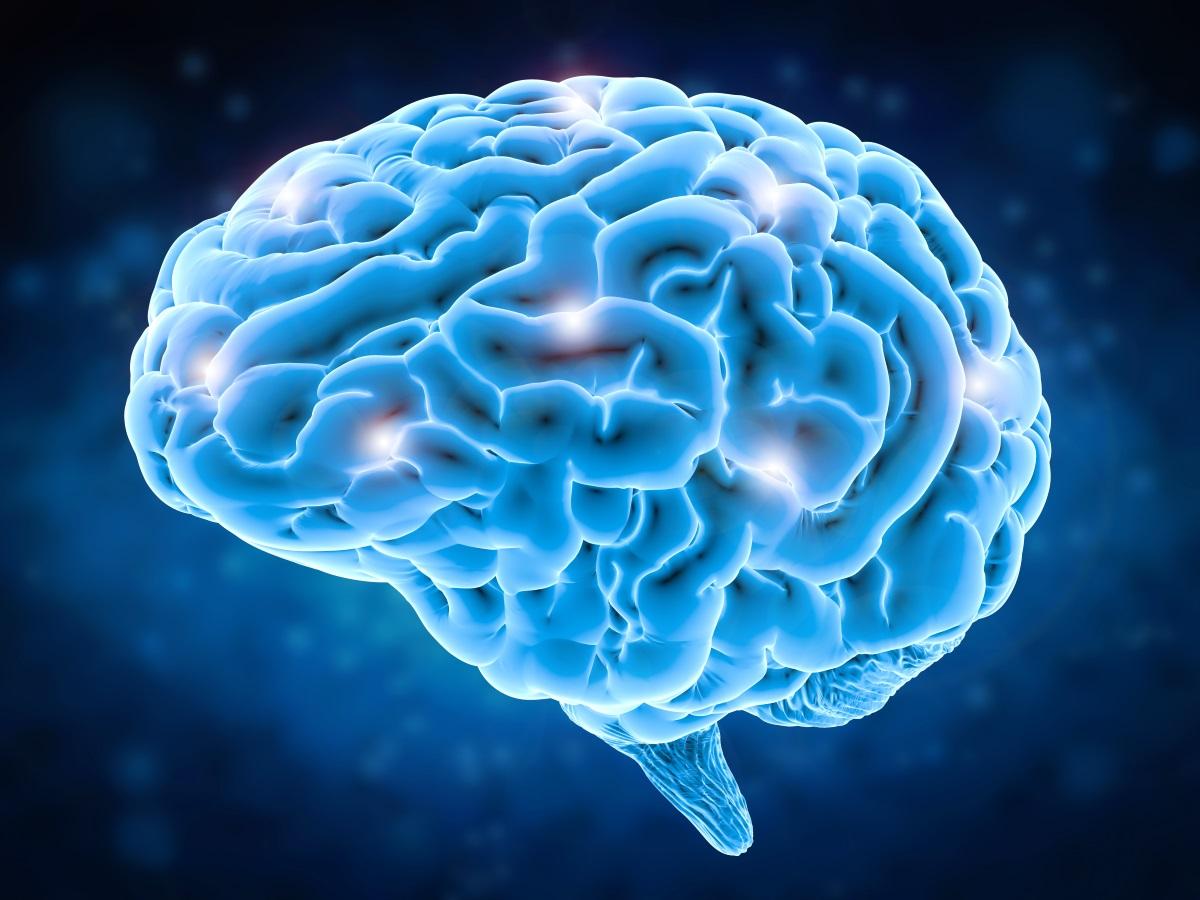 Как управлять энергией мозга