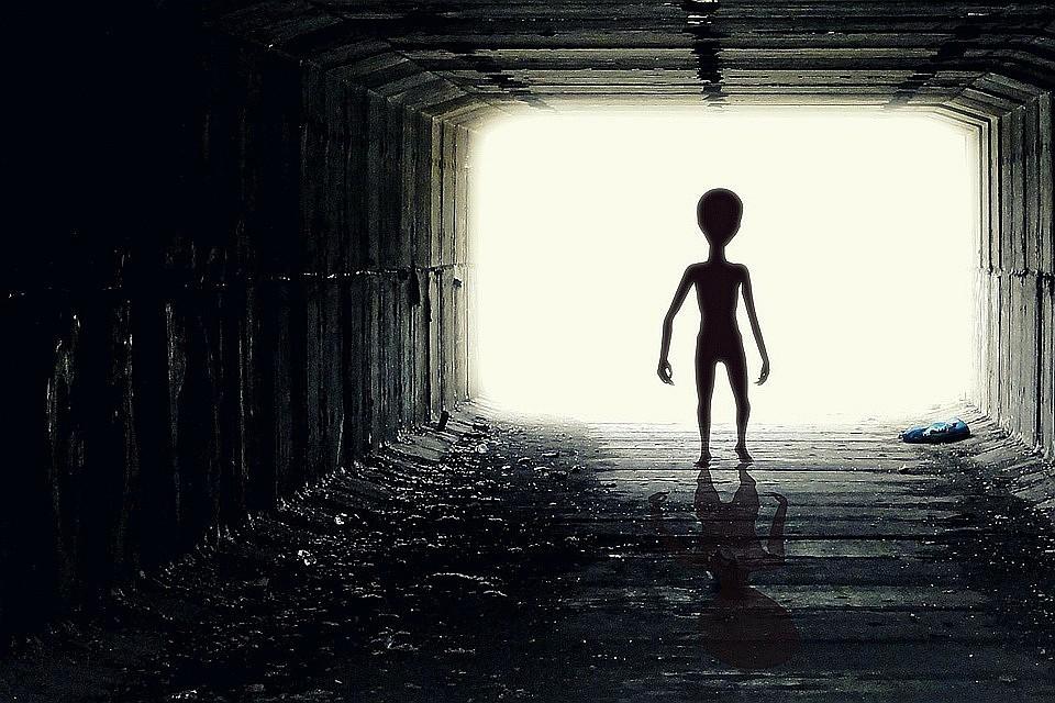 Картинки по запросу Человека создали инопланетяне: доводы исследователей