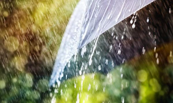 Картинки по запросу Сонник: дождь. К чему снится дождь по соннику