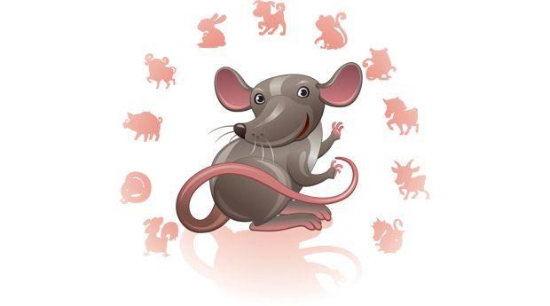 Картинки по запросу Год какого животного 2020 по восточному календарю