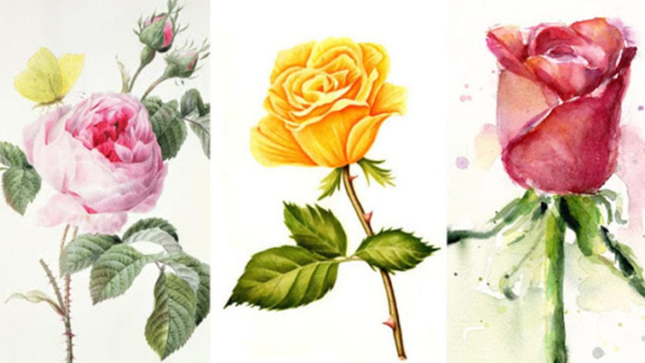 """Картинки по запросу """"Тест: выберите розу и узнайте, когда ваше желание сбудется"""""""