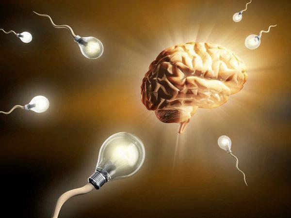 Что такое интуиция и как ее развить – Sokrovennik.ru